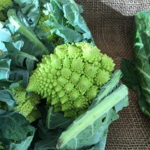 Fractals! Another variety of cauliflower