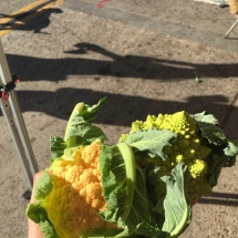 Colorful cauliflower caught our attention