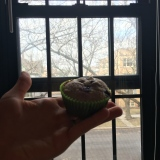 Delicious half wheat half regular flour blueberry muffins with lemon zest. Ask Danielle for her original recipe!