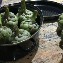 Before we prepared the artichokes, we made sure we had selected the right size pots.