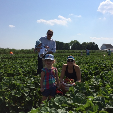 Charlotte has developed an enthusiasm for strawberries, and loved seeing where they grow.