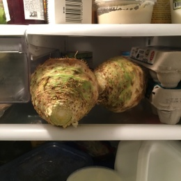 A sneak peek of celery root hanging out in the fridge.