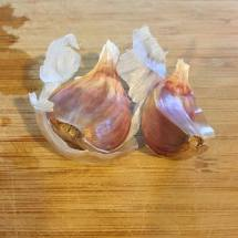 Try purple garlic if you find it.